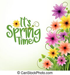 Vector Spring Time White Background