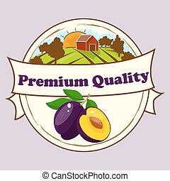 Vector square label, plum jam