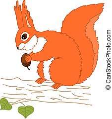 Vector Squirrel With Acorn Sitting on the Tree