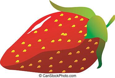 vector, strawberries.