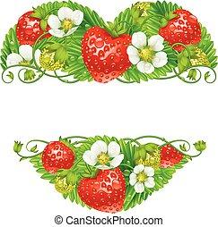 Vector strawberry frame