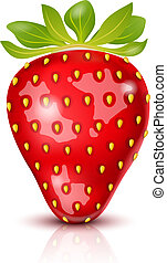 Vector Strawberry isolated