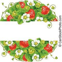 Vector strawberry round frame