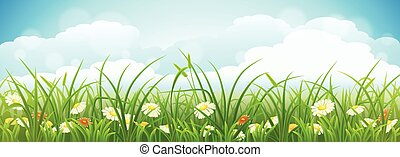 Vector summer landscape - Summer meadow landscape with green...