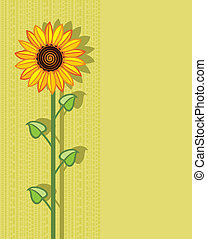 vector sunflower background