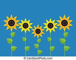 vector sunflower symbols