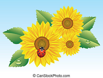 vector sunflowers and ladybird