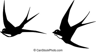 swallows - vector swallows