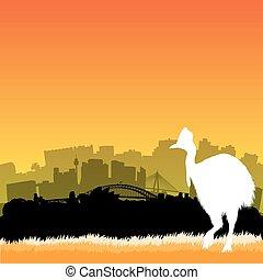 Vector Sydney illustration