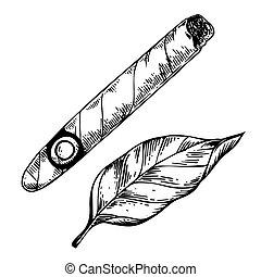 vector, tabaco, grabado, cigarro, hoja