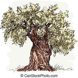 vector, tekening, olijf boom, oud