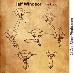 Vector tie and knot instruction