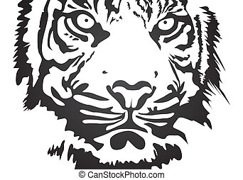 vector tiger - black vector tiger on white background