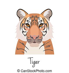 vector tiger head isolated. Flat style, cartoon object