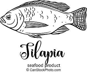 Vector tilapia. Hand drawn icon badge fish for design...