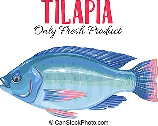 Vector tilapia. Icon badge fish for design seafood packaging...