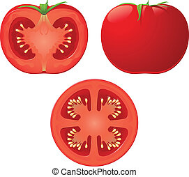 An isolated vector tomato and two halves