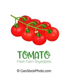 Vector tomato isolated on white background.Vegetable illustration for farm market menu. Healthy food design poster. Cartoon style vector illustration