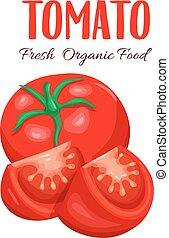 Vector tomato sliced. Red farm vegetable isolated in cartoon...