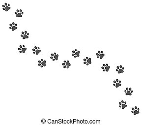 Vector trail of dog footprints