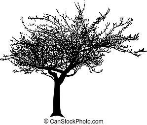 Vector tree - Black vector apple tree