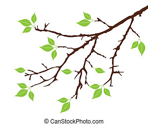 tree branch - vector tree branch with leaves