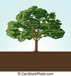Vector Tree - Illustrated tree, easy to change colors and...