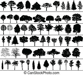 Vector Trees - Set of black silhouettes of vector trees