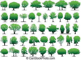 Vector trees - This image is a vector illustration and can...