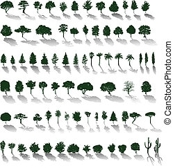 Vector trees with shadows - Set of vector silhouettes of ...