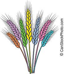 vector, trigo, colorido, orejas