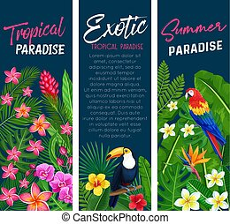 Vector tropical banners