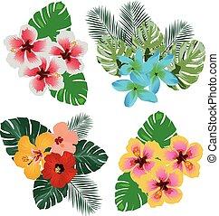 Vector Tropical Flowers