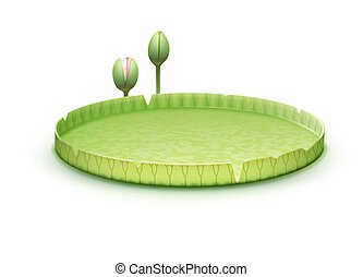 Water Lily pad - Vector tropical plant Giant Amazon Water...
