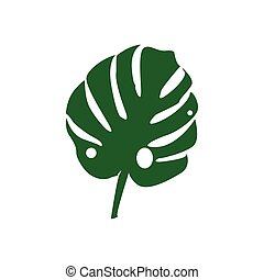 Vector. Tropical plant monstera isolated on white background