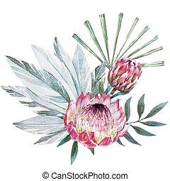 Vector tropical protea composition - Beautiful vector image...