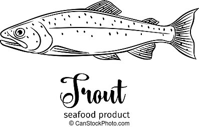 Vector trout.