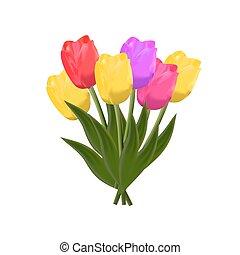 vector, tulips., vrijstaand
