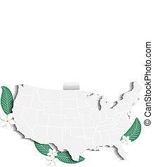 Vector USA map floral logo icon image