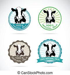 vector, vacas, conjunto, lechería, etiqueta