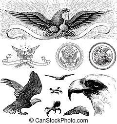 vector, vendimia, águila, iconos
