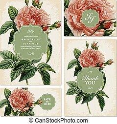 vector, vendimia, rosa, invitación boda, conjunto
