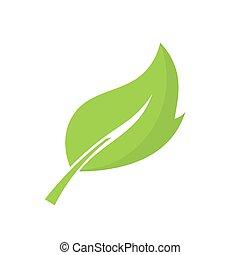 vector, verde, ilustración, leaf.