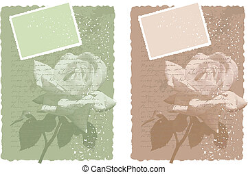 vector vintage background with rose
