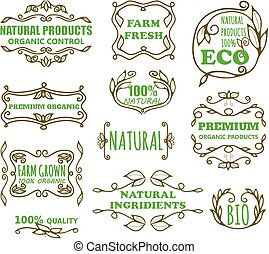 Vector vintage badges for eco products