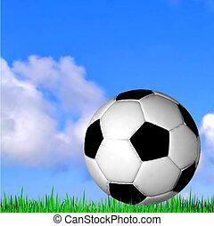 vector, voetbal, grass., bal, voetbal