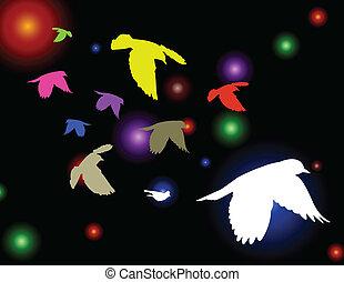 vector, vogels, illustratie