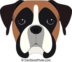 vector, vrijstaand, witte achtergrond, dog, illustratie, bokser
