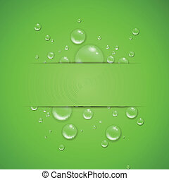 Vector Illustration of Water Drops on a Green Background