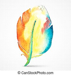 Vector watercolor feather isolated